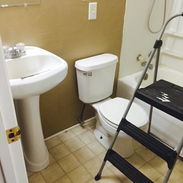 Bathroom remodel progress kitskorner for Show me remodeled bathrooms
