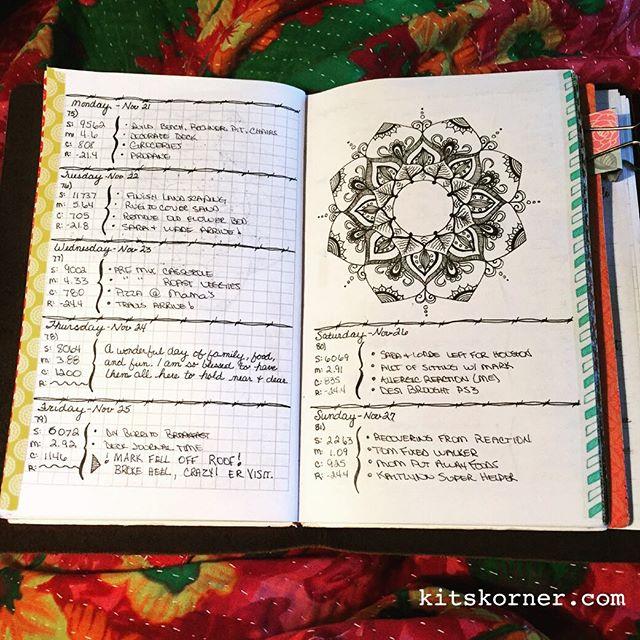 Nov 21 – Nov 27 Daily-Weekly Spread in my Mandala Journal…..