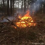 Draw or burn? Burn! Love my land!…